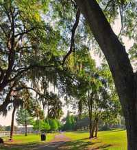 This link leads to a panoramic image of Riverside Park. Taken along the banks of the Hillsborough River in Tampa. The photographic images were shot with a Canon S95.