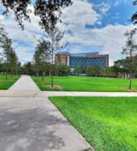 An HDR interactive panoramic image of The USF Quad in Tampa, Florida. The photographic images were shot with a Canon S95.